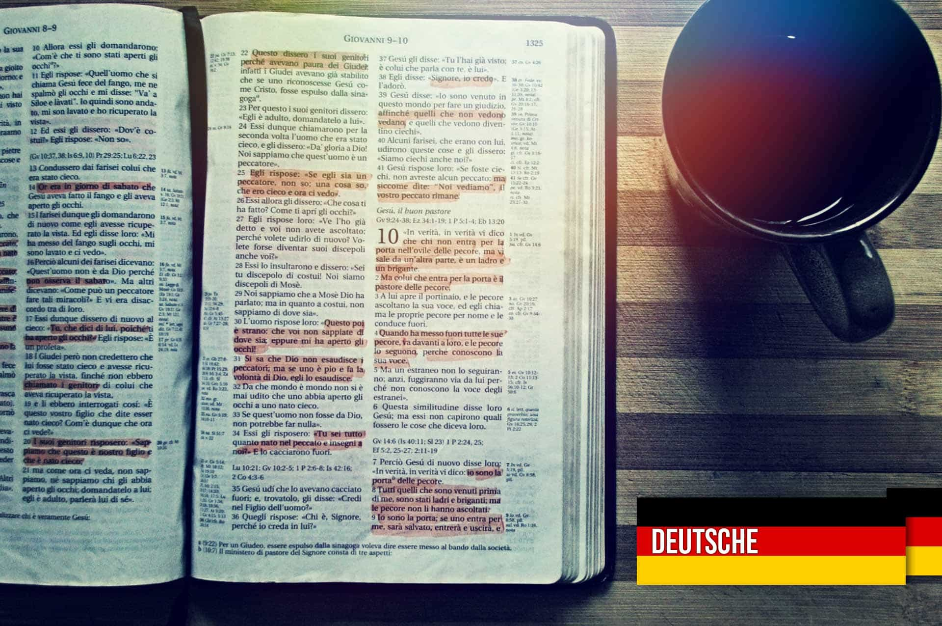 Die Bibel verstehen Der Inkarnations – Code (Understanding the Bible and the Incarnation Code) – German