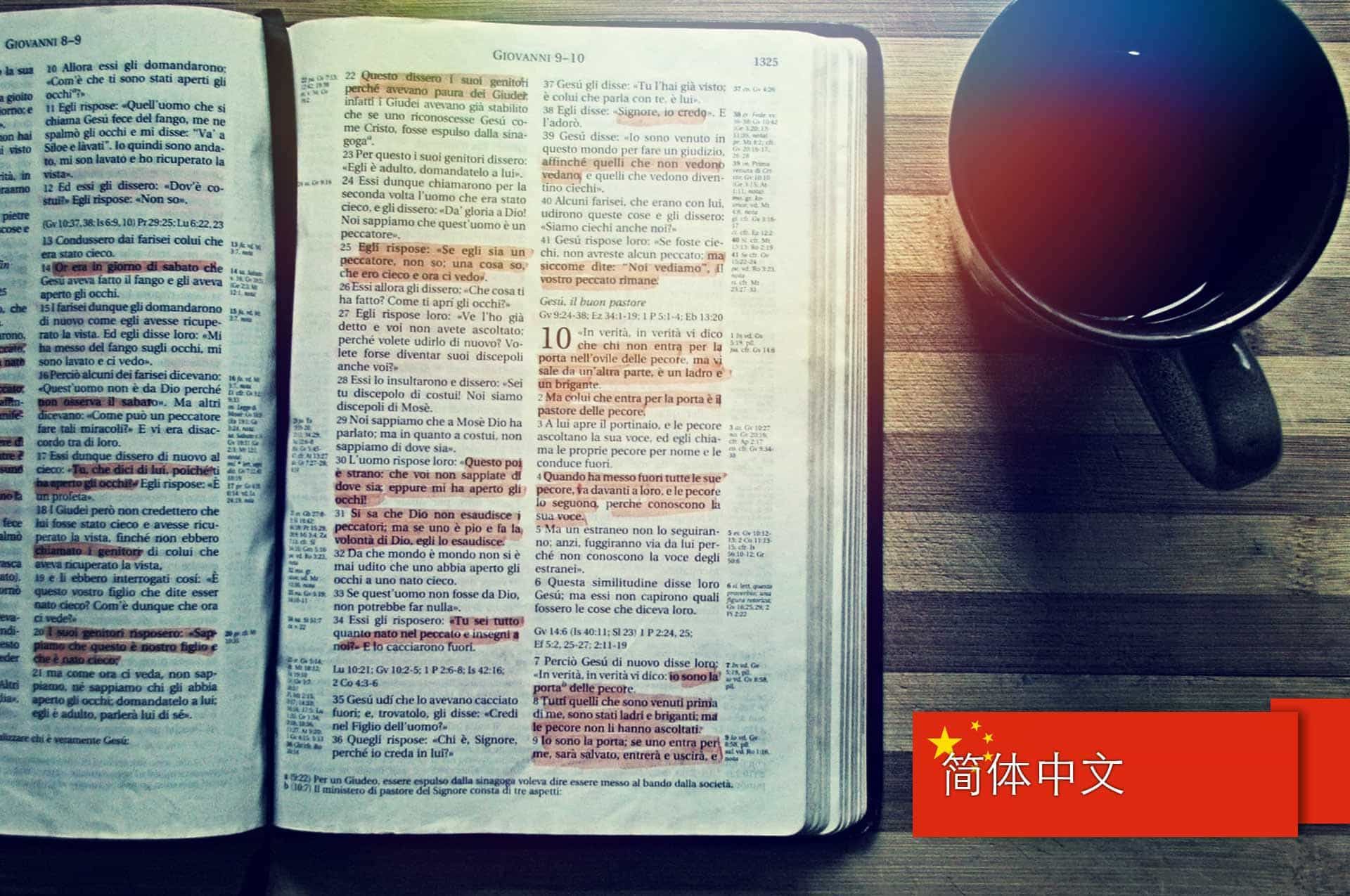 读懂圣经 – 道成肉身的密匙 (Understanding the Bible – The Incarnation Code) – Simplified Chinese