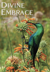 Cover of Divine Embrace by Francois du Toit