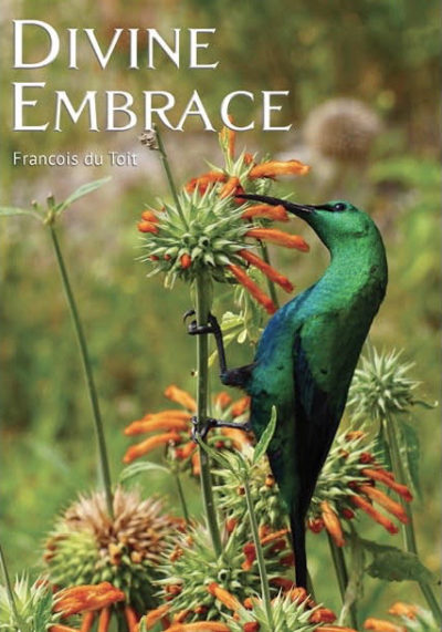 Cover of Divine Embrace by Francois du Toit
